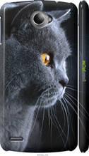 "Чехол на Lenovo S920 Красивый кот ""3038c-53-2448"""