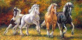 Пазлы Castorland 400119 Лошади