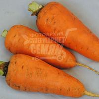 Морковь Болтекс (Clause) 1 г (перефасовано Vse-semena)