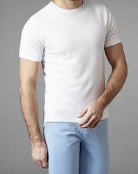 Мужская футболка наполоверсайз