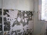 Демонтаж стен и перегородок в Днепропетровске, фото 1