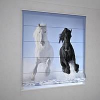 Римські фотошторы коні на снігу