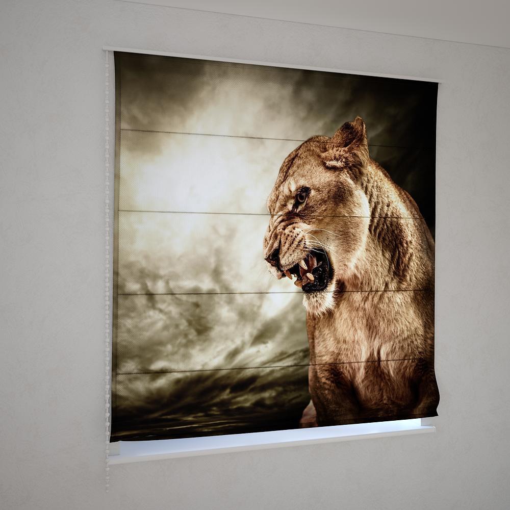 Римські фотошторы грізна левиця