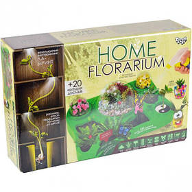 "Набір ""HOME FLORARIUM"" укр, для вирощування рослин HFL-01-01U ДТ-СО-16-04"