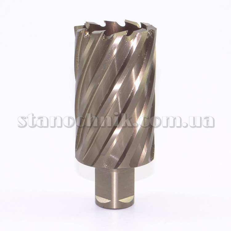 Фреза кольцевая 40х55 мм HSS-XE Weldon Gold-Line KARNASCH (201270U040)