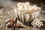 Органическое смягчающее масло Ши Now Foods Solutions Shea Butter 85 г, фото 2