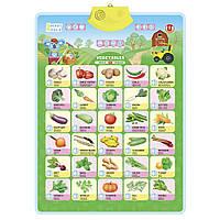 Интерактивный постер Smart Koala Овощи SKCIV2 TV, КОД: 2433043
