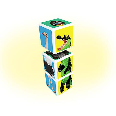 Geomag MAGICUBE Savana Animals 3 cubes | Магнітні кубики Тварини савани 109MC, фото 2