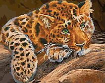 Зеленоокий леопард