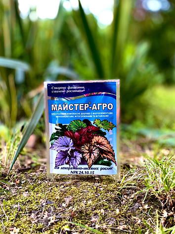 Майстер-Агро для декоративно-листяних рослин, 25 г, фото 2