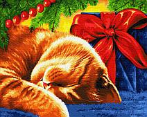 Сонний кіт