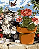 Ленивый котенок