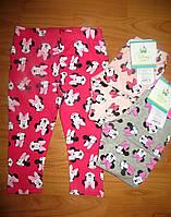 Лосинки для девочек Disney 62-68-74-80-86 рр.