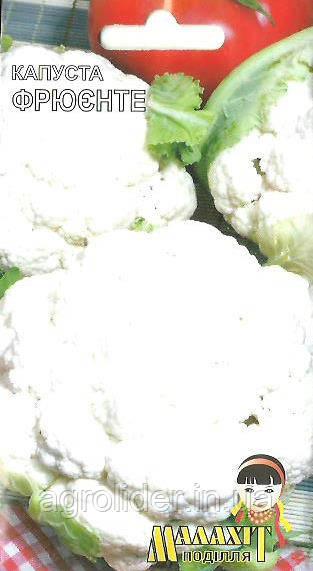 Семена капуста Фрюенте 1г Белая (Малахiт Подiлля)