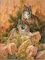 """Набор алмазной вышивки (мозаики) """"Семья волков. Отдых на камнях"""""""