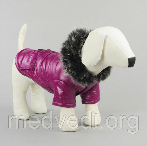 Зимняя одежда для собак, куртка ChicDog, размер S