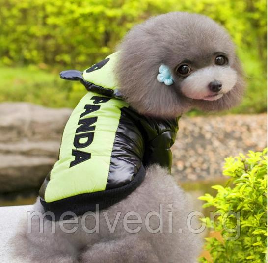 Куртка панда для собак