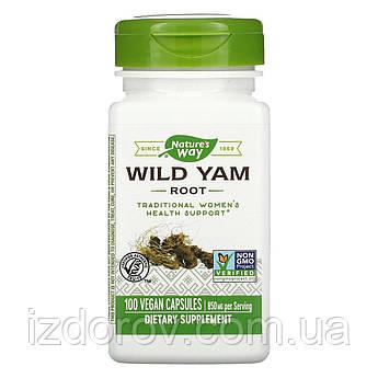 Nature's Way, Корень дикого ямса, 850 мг, Wild Yam Root, 100 веганских капсул