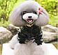 Куртка Panda для собак, размер S, фото 2