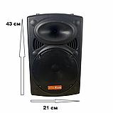 Портативная мощная колонка с чистым звуком 500W Su-Kam BT 100D + 1 беспроводной микрофон, фото 5