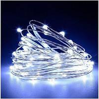 Світлодіодна гірлянда нитка 10 м 100 led (біла) White від мережі 220В #28