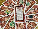 Карты Shaman Wisdom Cards (Шаманской Мудрости), фото 3