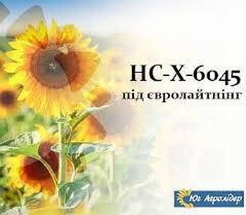 Насіння соняшника НС-Х-6045 (OR Stop)(під євро-лайтнінг) Сербської селекції
