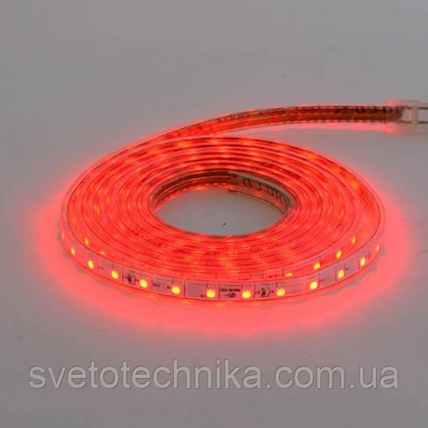 Светодиодная лента VOLGA 220-240V красная IP65