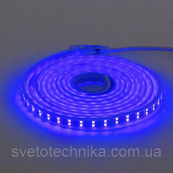 Світлодіодна стрічка COLORADO синя 220-240V IP65