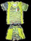 """Дитячі костюми футболка шорти """"Макс"""" для хлопчика р. 56. Від 3шт по 36грн, фото 2"""