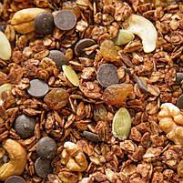 Гранола Шоколадна в плівці Oats&Honey 500 г, фото 2