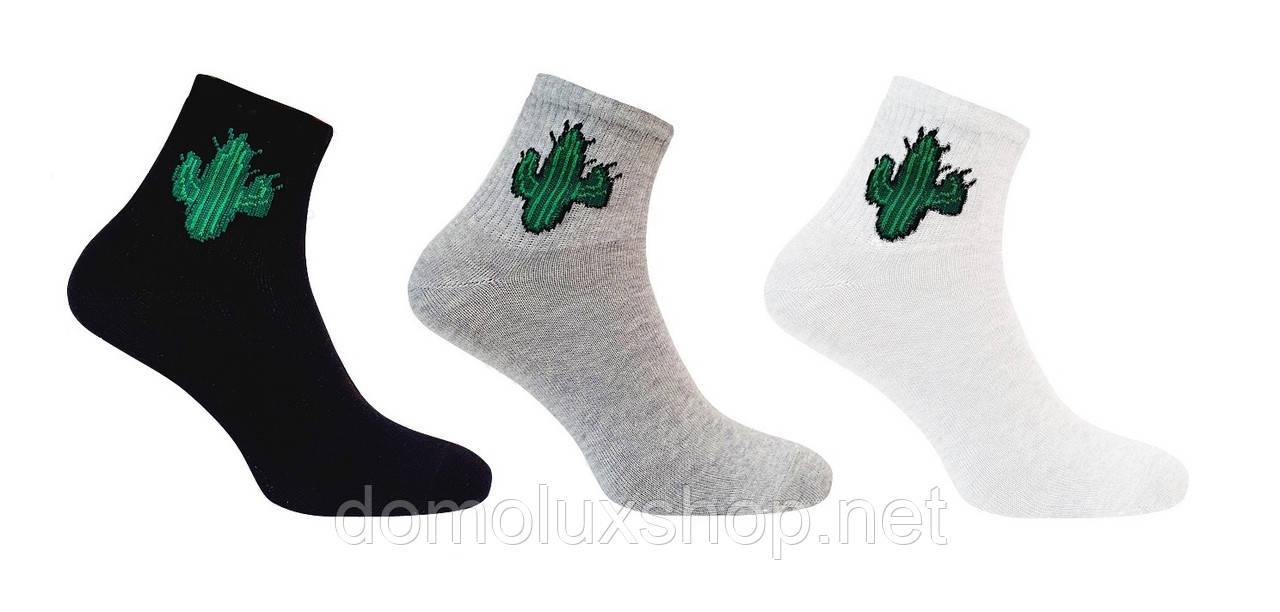 Super Socks Набор носков Cactus 3 пары р. 36-40 (S004)