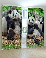 Фотошторы панда
