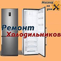 Ремонт Холодильників Zanussi в Ізмаїлі на Дому