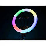 Светодиодная кольцевая лампа F133/1 RGB 45 см, фото 6