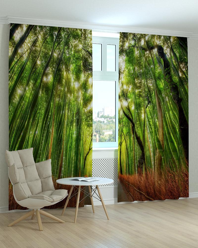 Фотошторы пейзажі бамбуковий ліс