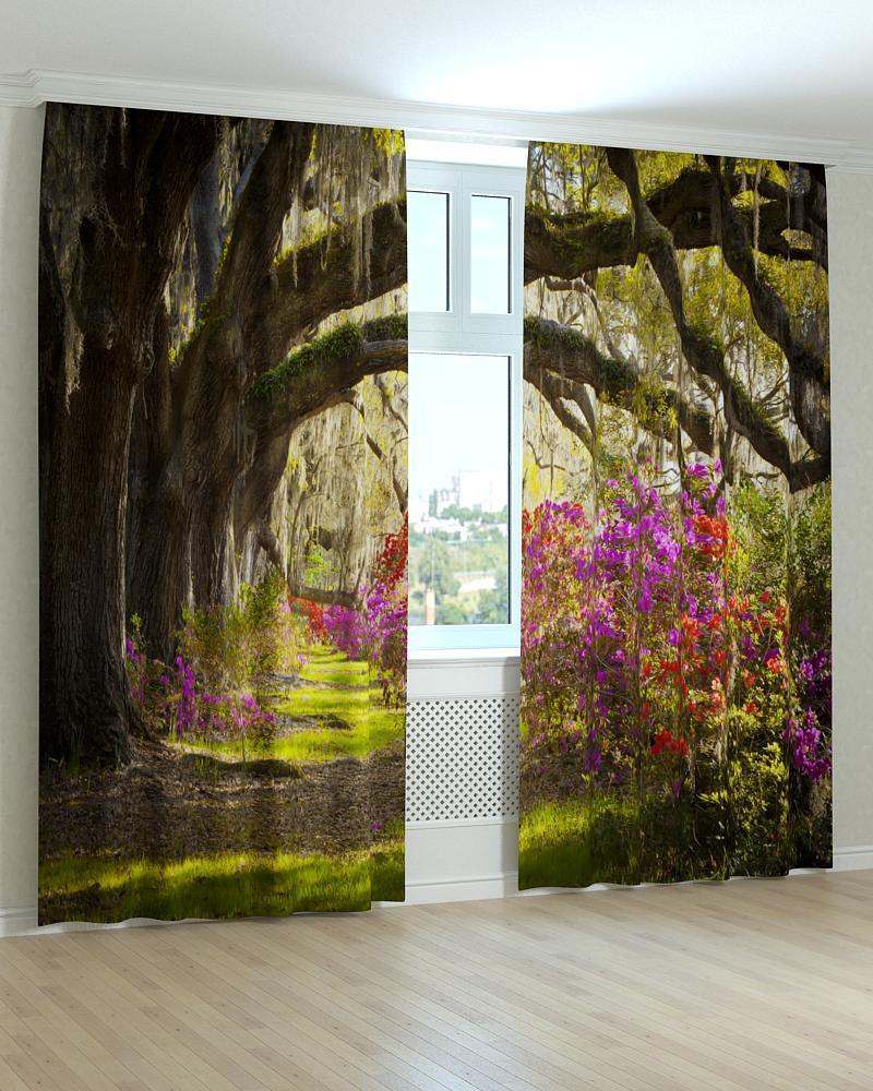 Фотошторы арка з дерев і квітів