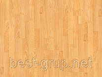 2349 - Бук европейский ламинат WinnPol (Винпол) коллекция Classic