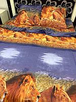 Комплект постільної білизни Леві Ранфорс / Комплект постільної білизни Леви Ранфорс, фото 1