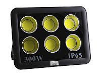 Прожектор світлодіодний 300W 6500K 6COB IP65 14700LM LMP36-300