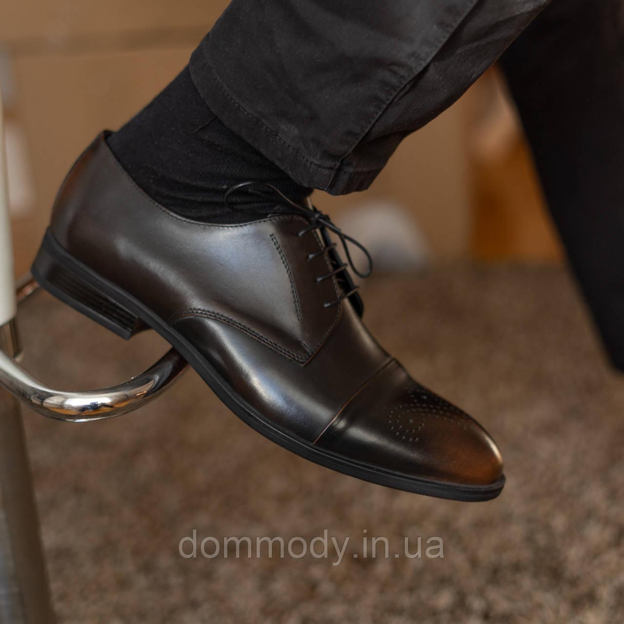 Туфлдербі чоловічі кольору коричневий кабір