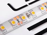 Світлодіодна стрічка 2835-120led-8mm-12В, IP65 тепло білий