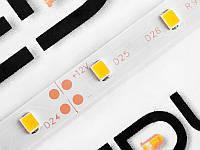 Світлодіодна стрічка 2835-60led-8mm-12V, IP20 одинарна плата тепло білий