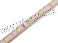 Світлодіодна стрічка 3528-60led-10mm-220V, IP68 білий