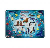 "Дитячий пазл в рамці ""Антарктида"" DoDo R300176, 53 деталі"