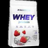 Сывороточный протеин концентрат AllNutrition Whey Protein (2,2 кг) алл нутришн Strawberry