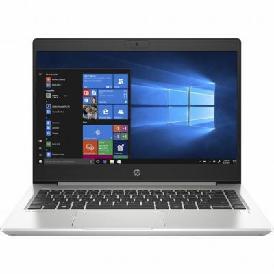 Ноутбук HP ProBook 445 G7 (7RX16AV_V2)