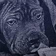 Полотенце махровое ТМ Речицкий текстиль, Kane-korso 67х150 см, фото 3