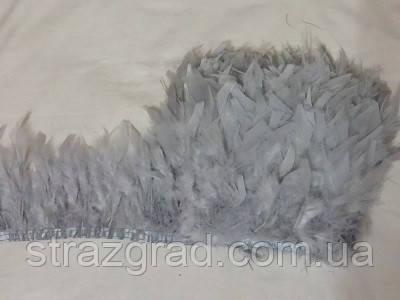 Перьевая тесьма из перьев индюка. Цвет Светло серый. Перо 12-17см. Цена за 0,5м.