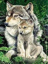 Алмазна вишивка Вовки, 50 x 40 див. Квадратні стрази